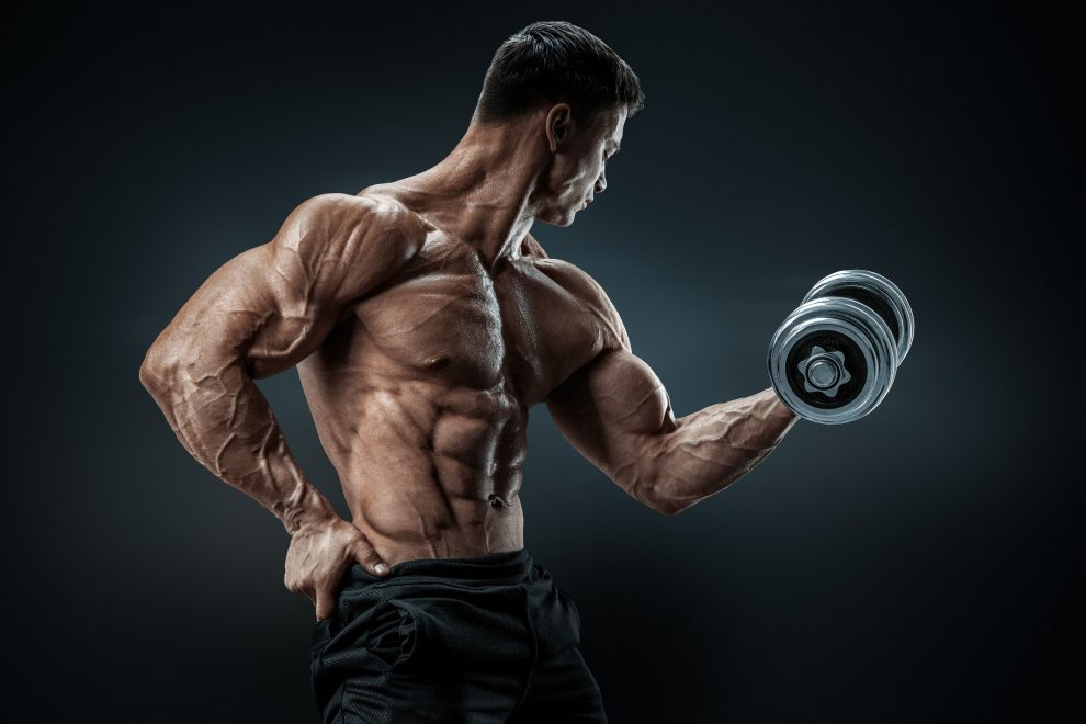 the ultimate guide to training frequency for muscle mass