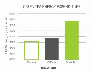 Research Review Green Tea Burns Calories And Boosts Energy Expenditure